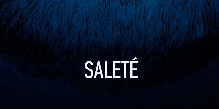 tete-salete-01-700x350