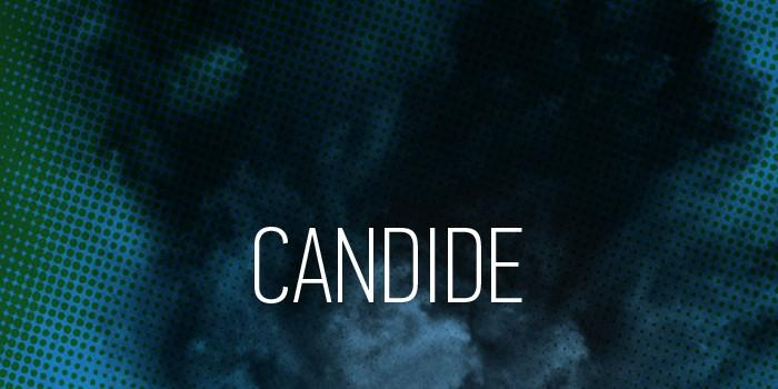 tete-candide-01