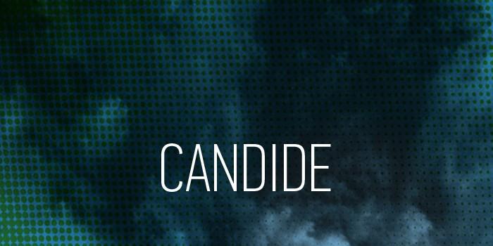 tete-candide-03